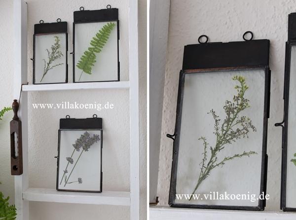 Botanik Fotorahmen