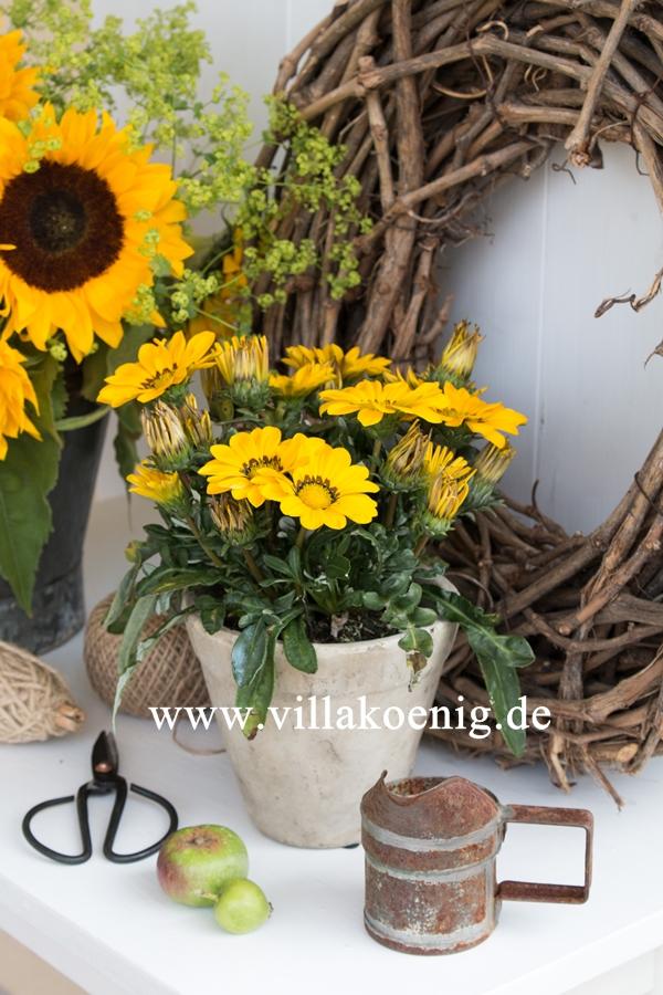 Mittagsgoldblume mit Weidenkranz und Sonnenblumen dekoriert