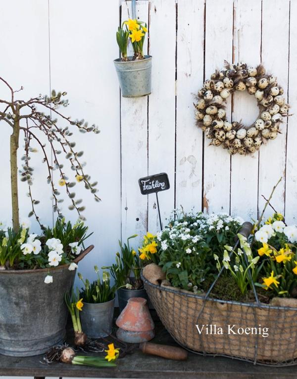 Frühling im Garten | Villa König
